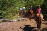 Verão em T. de Chillán